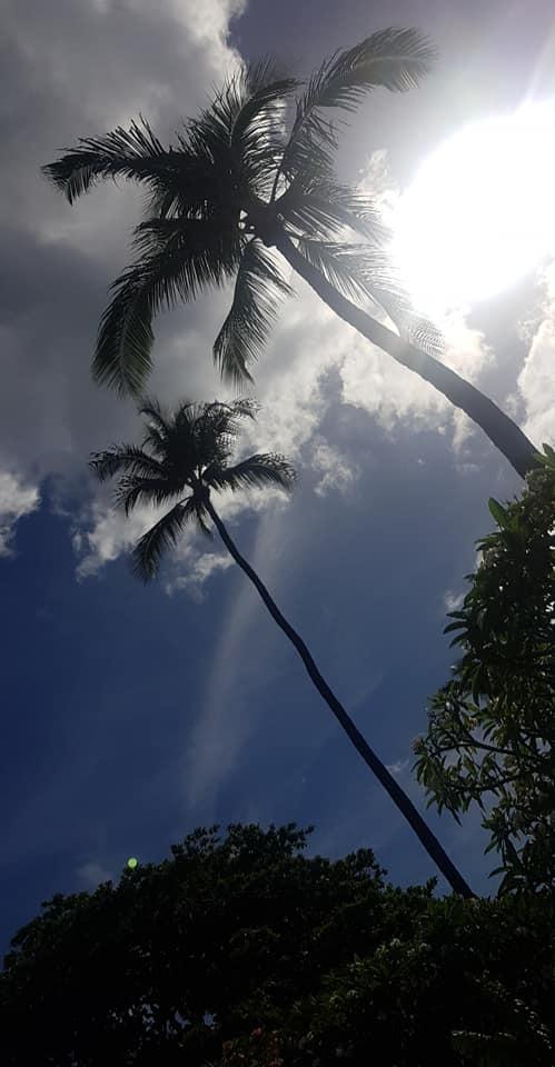 Kaanapali Beach5